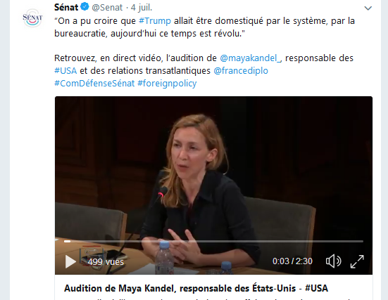 Capture tweet Sénat audition